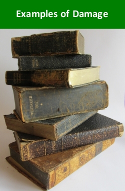 Examples of Damage to Books